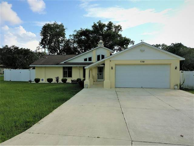7381 Philatelic Drive, Spring Hill, FL 34606 (MLS #W7837552) :: The Curlings Group