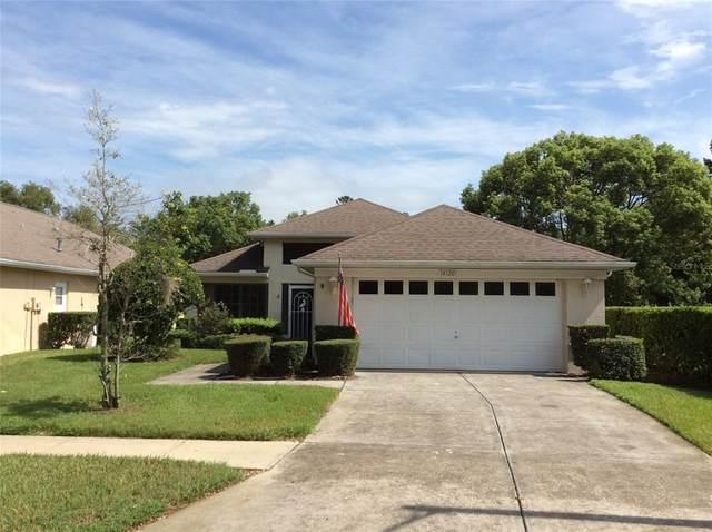 14120 Roller Lane, Hudson, FL 34667 (MLS #W7837565) :: Everlane Realty