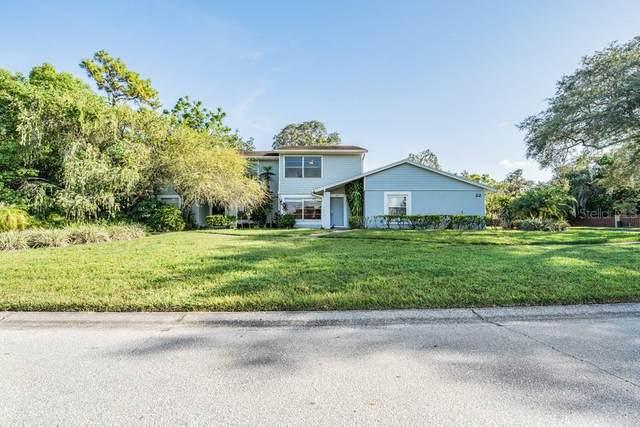 14713 Lake Forest Drive, Lutz, FL 33559 (MLS #W7837566) :: Team Bohannon