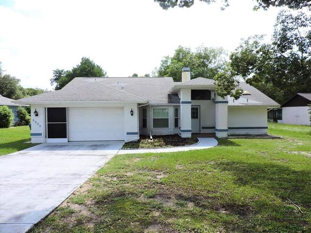 8049 Pagoda Drive, Spring Hill, FL 34606 (MLS #W7837597) :: The Curlings Group