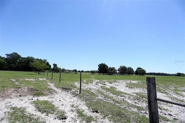 Hayman Road, Brooksville, FL 34601 (MLS #W7837634) :: Vacasa Real Estate