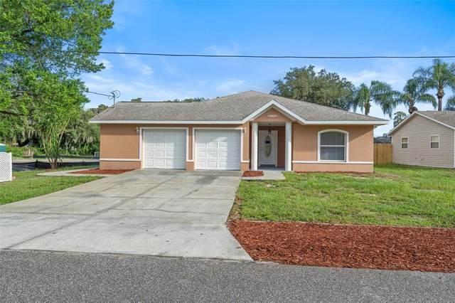 12423 Wildrose Avenue, New Port Richey, FL 34654 (MLS #W7837637) :: GO Realty