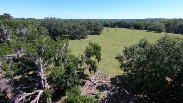 Hayman Road, Brooksville, FL 34601 (MLS #W7837641) :: Vacasa Real Estate