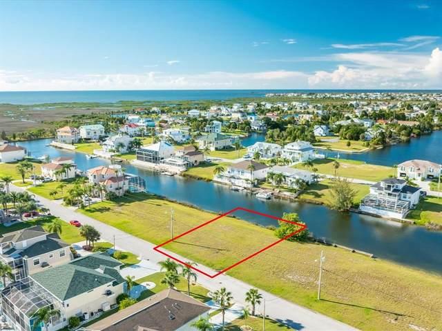 3479 Bluefish Drive, Hernando Beach, FL 34607 (MLS #W7837683) :: Delgado Home Team at Keller Williams