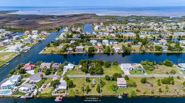 3214 Azalea Drive, Hernando Beach, FL 34607 (MLS #W7837707) :: Sarasota Gulf Coast Realtors