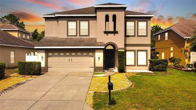 11519 Pennsville Court, New Port Richey, FL 34654 (MLS #W7837711) :: Zarghami Group