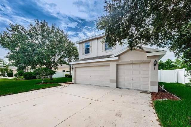 1651 Swamp Rose Lane, Trinity, FL 34655 (#W7837753) :: Caine Luxury Team