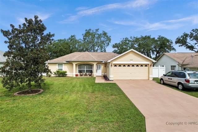 11049 Cranston Street, Spring Hill, FL 34608 (MLS #W7837758) :: Your Florida House Team