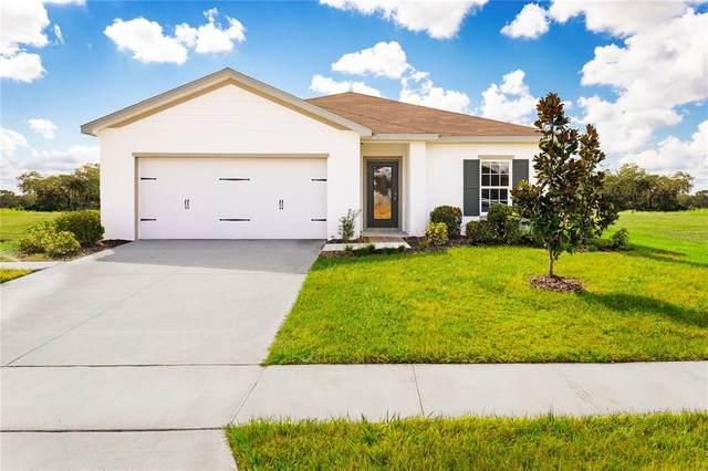 880 Eagle Rock Terrace, Winter Haven, FL 33880 (MLS #W7837803) :: Cartwright Realty