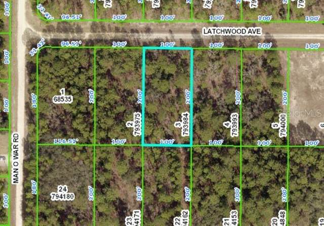 Latchwood Avenue, Weeki Wachee, FL 34614 (MLS #W7837841) :: GO Realty
