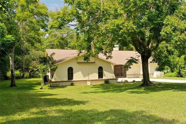 5323 Suwannee Road, Weeki Wachee, FL 34607 (MLS #W7837886) :: Everlane Realty