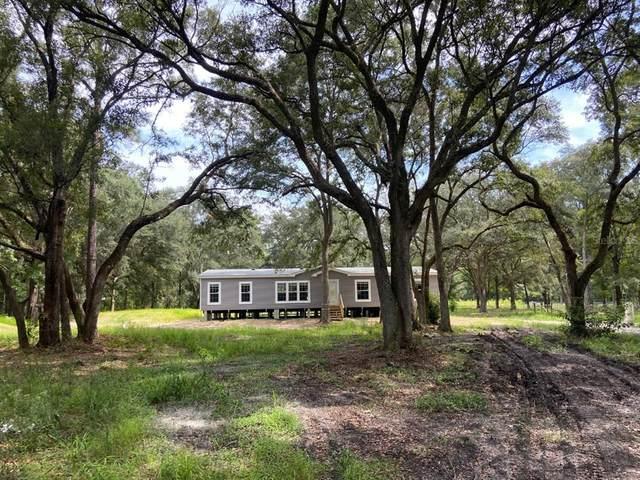 7224 SE 163RD Lane, Lake Butler, FL 32054 (MLS #W7837899) :: Everlane Realty
