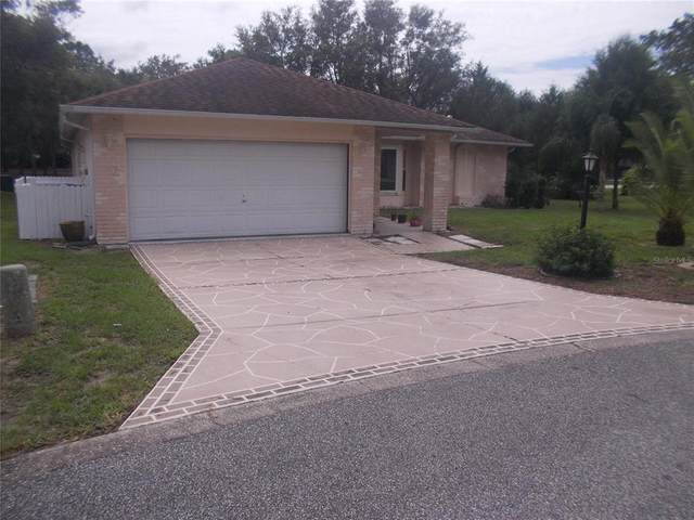 3022 Saw Mill Lane, Spring Hill, FL 34606 (MLS #W7837901) :: The Curlings Group