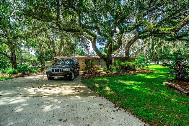 8725 Brookwood Drive, New Port Richey, FL 34654 (MLS #W7837906) :: Zarghami Group