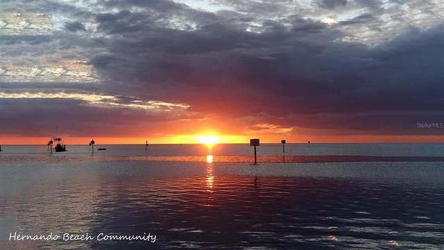 3169 Flamingo Boulevard, Hernando Beach, FL 34607 (MLS #W7837912) :: RE/MAX Elite Realty