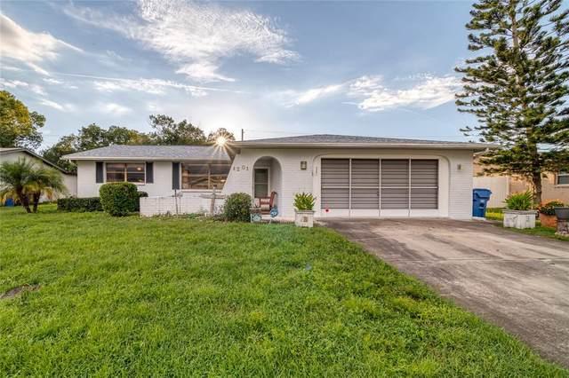 4201 Riverwood Drive, New Port Richey, FL 34653 (MLS #W7837937) :: Alpha Equity Team