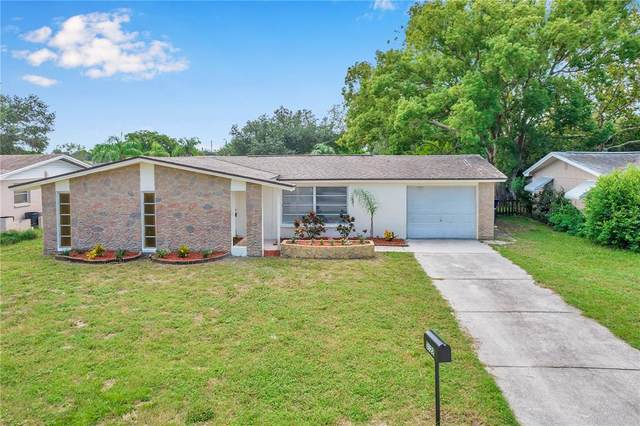 3122 Palamore Dr, Holiday, FL 34691 (MLS #W7837940) :: Everlane Realty