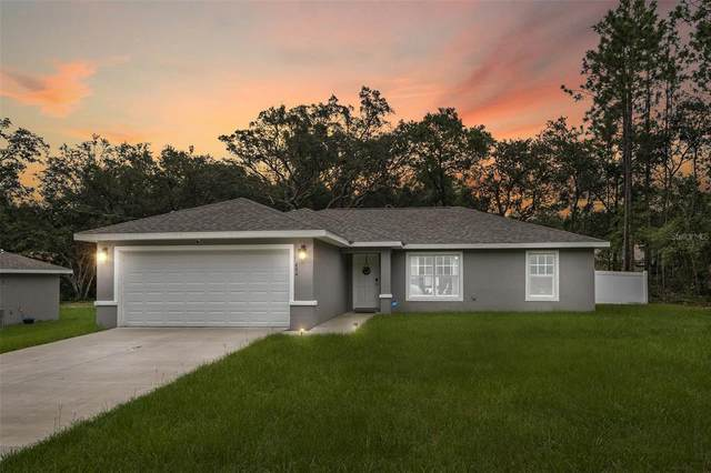 484 W Charming Place, Citrus Springs, FL 34434 (MLS #W7837953) :: Your Florida House Team