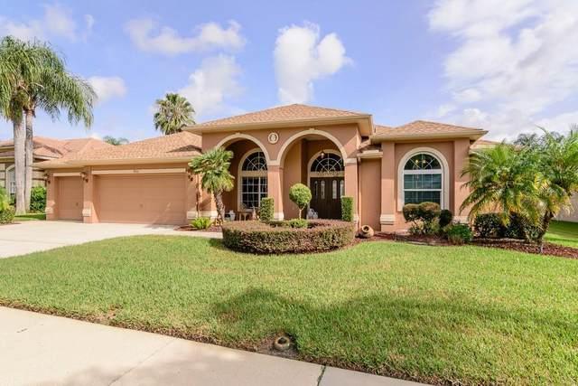 9051 Callaway Drive, Trinity, FL 34655 (MLS #W7837965) :: Carmena and Associates Realty Group