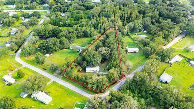 26300 Glenhaven Road, Wesley Chapel, FL 33544 (MLS #W7837970) :: Pristine Properties