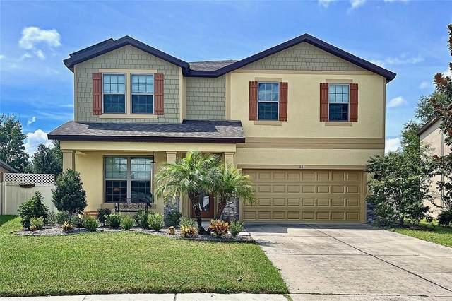 661 Alpine Thistle Drive, Brooksville, FL 34604 (MLS #W7837981) :: Everlane Realty