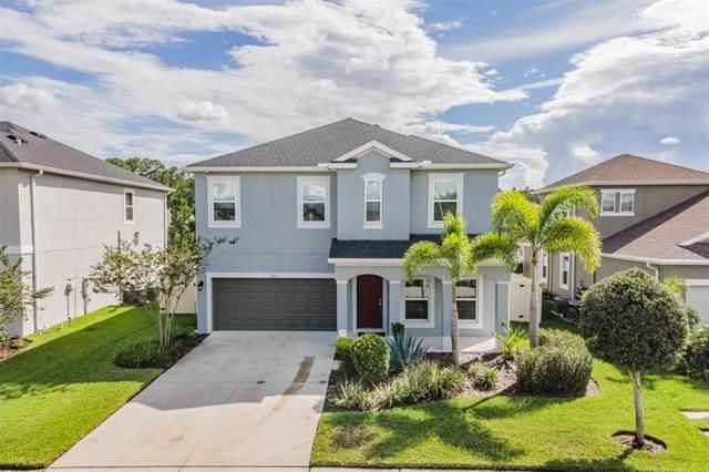 1213 Montgomery Bell Road, Wesley Chapel, FL 33543 (MLS #W7837983) :: Zarghami Group