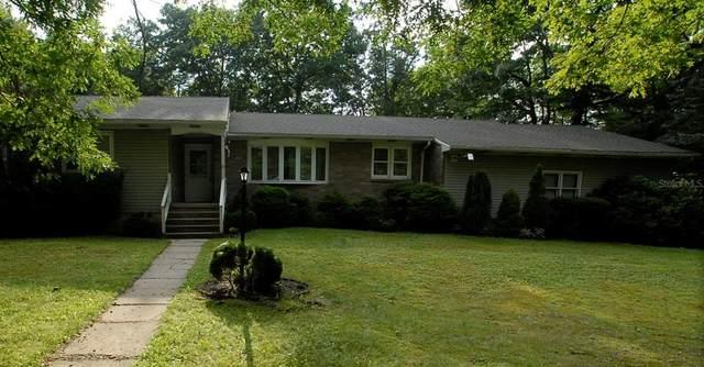 16 Laurel Lane, FREELAND, PA 18224 (MLS #W7837986) :: Bridge Realty Group