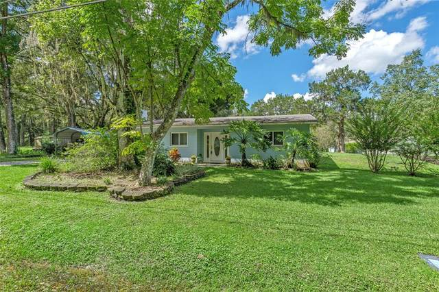 7161 Hope Hill Road, Brooksville, FL 34601 (MLS #W7837994) :: Carmena and Associates Realty Group