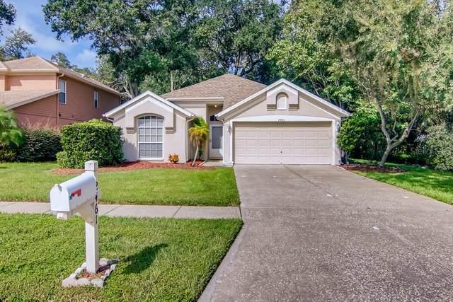 2461 Hickman Circle, Clearwater, FL 33761 (MLS #W7838002) :: Zarghami Group