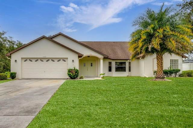 10034 Dunkirk Road, Spring Hill, FL 34608 (MLS #W7838008) :: Globalwide Realty