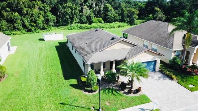 30711 Pumpkin Ridge Drive, Wesley Chapel, FL 33543 (MLS #W7838010) :: RE/MAX Local Expert