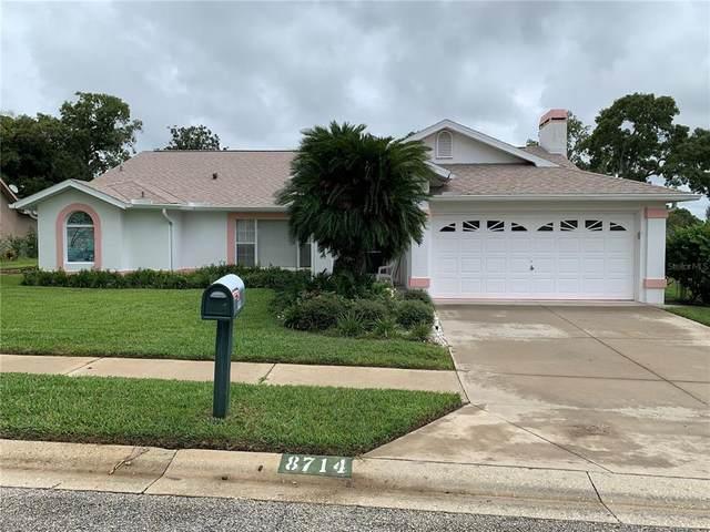 8714 Bel Mere Drive, Hudson, FL 34667 (MLS #W7838019) :: Young Real Estate