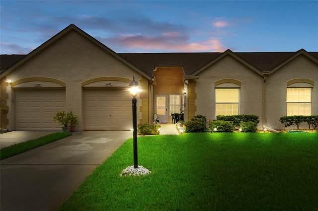 11437 Versailles Lane, Port Richey, FL 34668 (MLS #W7838022) :: Everlane Realty