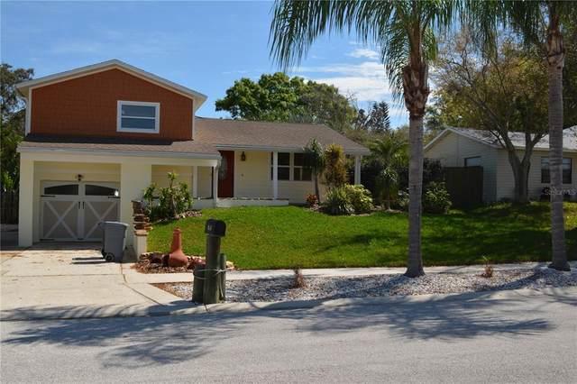 815 Cavemill Way, Tarpon Springs, FL 34689 (MLS #W7838025) :: Globalwide Realty