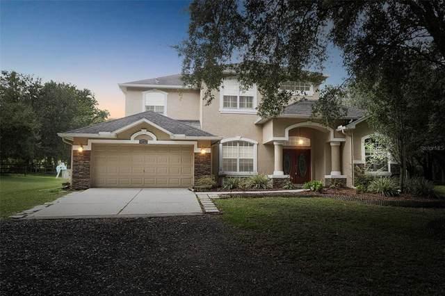 12479 Old Crystal River Road, Brooksville, FL 34601 (MLS #W7838032) :: RE/MAX Elite Realty