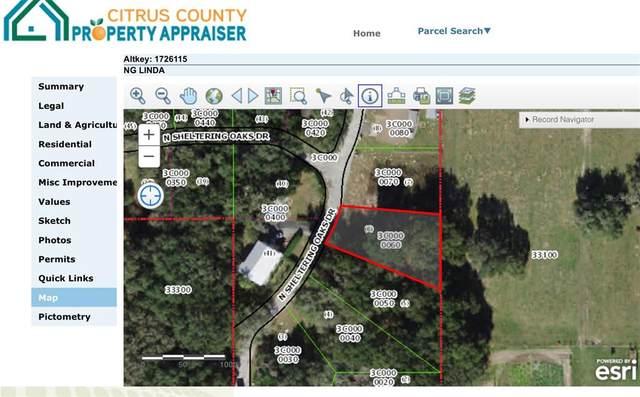 47 N Sheltering Oaks Drive, Inverness, FL 34453 (MLS #W7838081) :: Prestige Home Realty