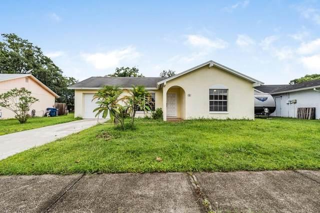 7948 Putnam Circle, New Port Richey, FL 34655 (#W7838085) :: Caine Luxury Team