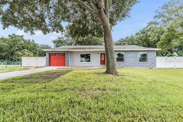 7402 Capitano Street, Riverview, FL 33578 (#W7838088) :: Caine Luxury Team