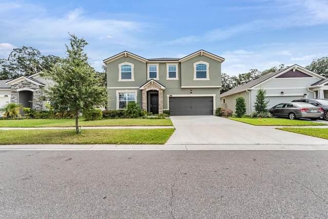11549 Cedar Valley Drive, Riverview, FL 33569 (#W7838089) :: Caine Luxury Team