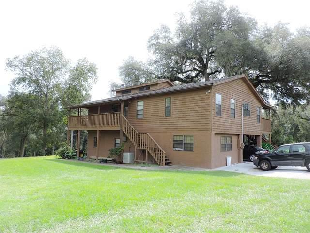 18530 Lake Iola Road, Dade City, FL 33523 (MLS #W7838090) :: Globalwide Realty