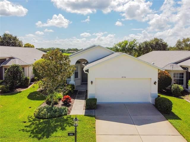 18550 Fairway Green Drive, Hudson, FL 34667 (MLS #W7838094) :: Visionary Properties Inc