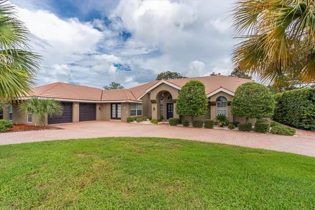 10056 Twelve Oaks Court, Weeki Wachee, FL 34613 (MLS #W7838097) :: Everlane Realty