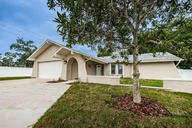 8005 Buttonball Lane, Port Richey, FL 34668 (MLS #W7838101) :: Cartwright Realty