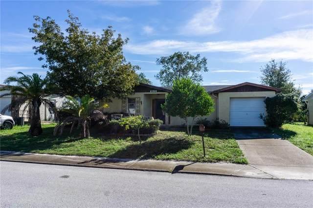 9822 Woodstock Lane, Port Richey, FL 34668 (MLS #W7838109) :: Bustamante Real Estate