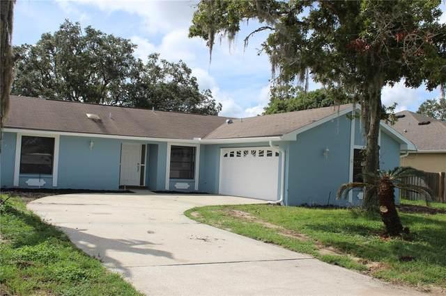 10312 Heathcliff Street, Spring Hill, FL 34608 (MLS #W7838129) :: Sarasota Gulf Coast Realtors