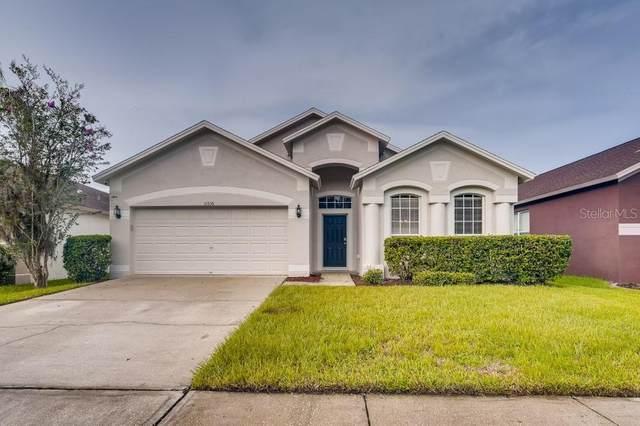31536 Wrencrest Drive, Zephyrhills, FL 33543 (MLS #W7838145) :: Cartwright Realty