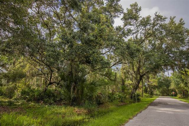 3233 Douglas Road, Port Charlotte, FL 33980 (MLS #W7838152) :: Globalwide Realty