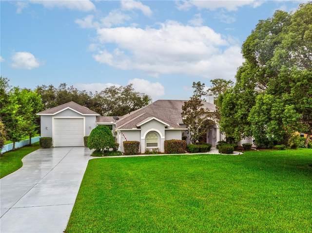 10164 Ridge Top Loop, Weeki Wachee, FL 34613 (MLS #W7838156) :: Cartwright Realty