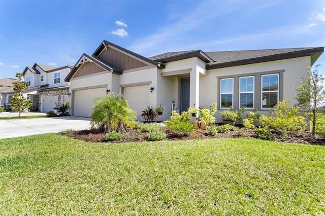 11332 June Briar Loop, San Antonio, FL 33576 (MLS #W7838170) :: Cartwright Realty