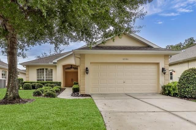 4384 Caliquen Drive, Brooksville, FL 34604 (MLS #W7838172) :: Cartwright Realty